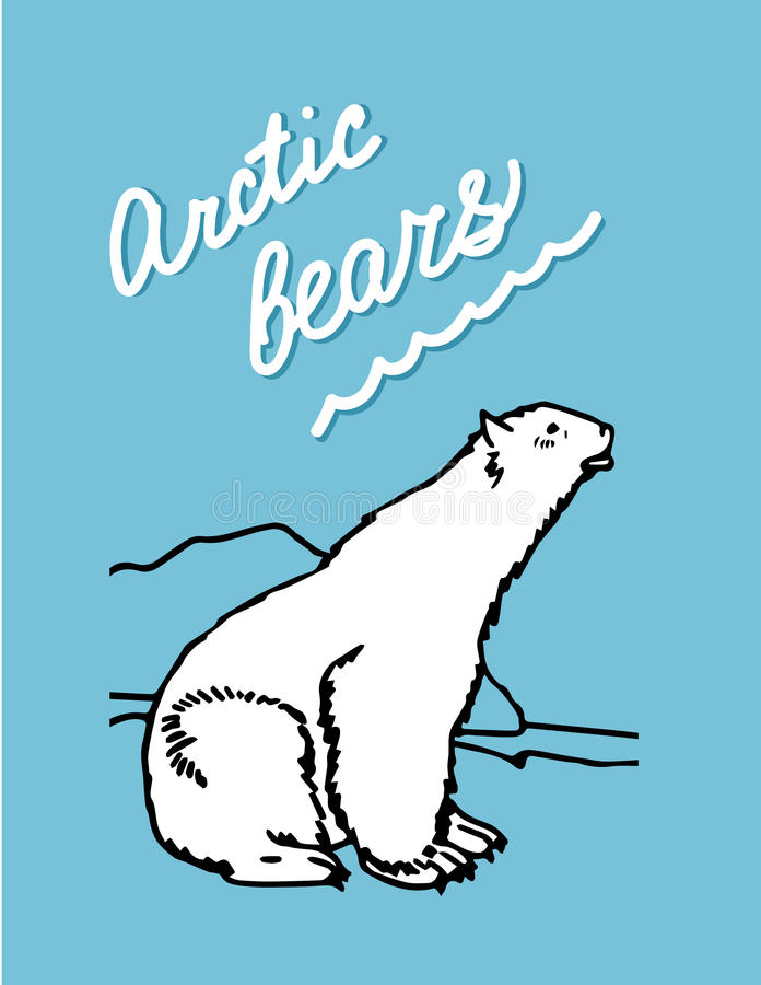 Arctic bears royalty free stock photo