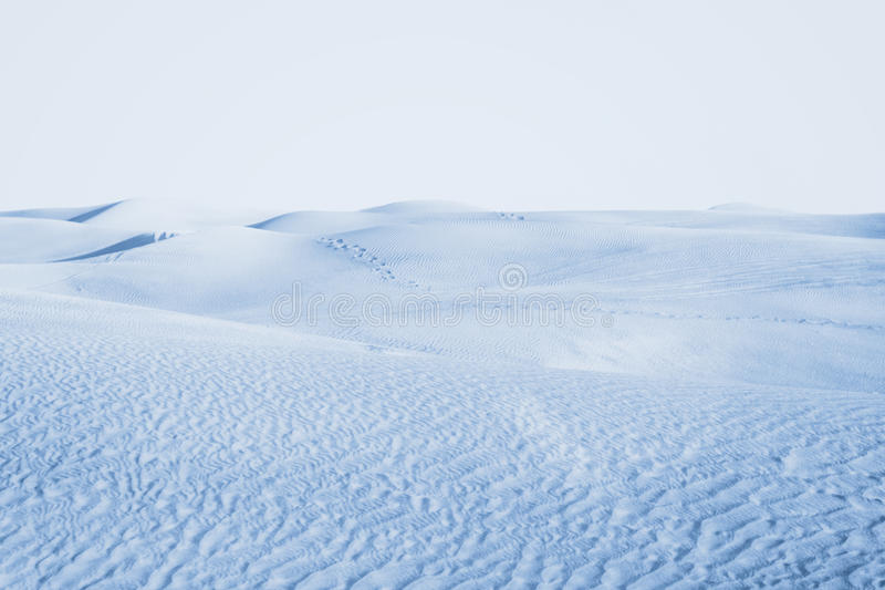 Arctic desert. winter landscape with snow drifts. Snow desert stretches far beyond the horizon royalty free stock photography