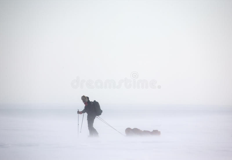 Arctic Expedition stock photography