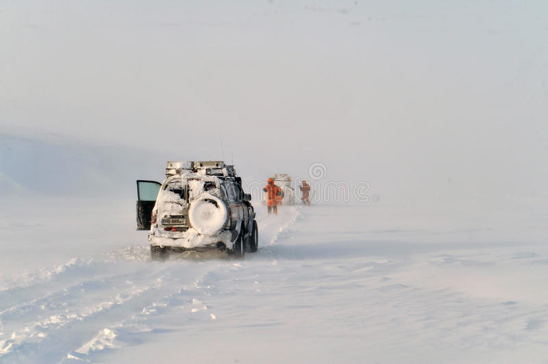 Arctic expedition royalty free stock photos