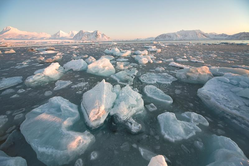 Arctic landscape - floating ice royalty free stock photo