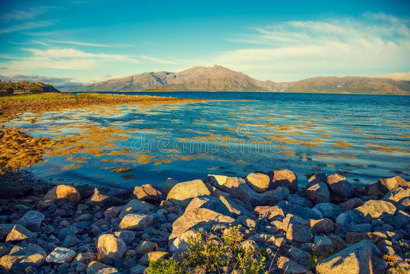 Arctic landscape. Lofoten islands, Norway royalty free stock photo