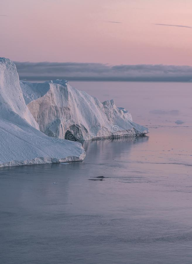 Arctic nature landscape with icebergs in Greenland icefjord with midnight sun sunset / sunrise in the horizon. Early stock photos