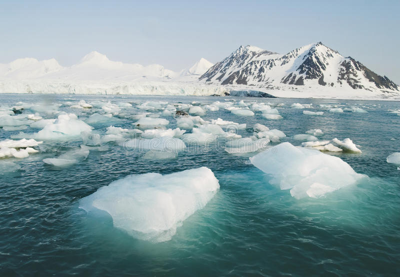 Arctic Ocean - ice in the sea. Winter in The Arctic - Arctic Ocean - ice in the sea royalty free stock images
