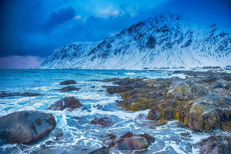 Arctic Ocean Near Rocky Shore of Picturesque Lofoten Islands Against Snowy Mountains in Norway at Spring stock photography