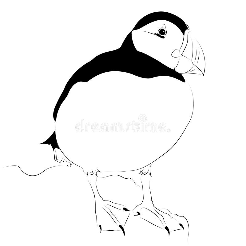Arctic Puffin as line drawing royalty free stock photo
