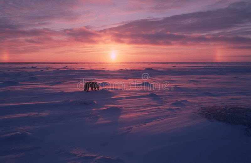 Arctic Sunset With Sun Dogs Royalty Free Stock Photography