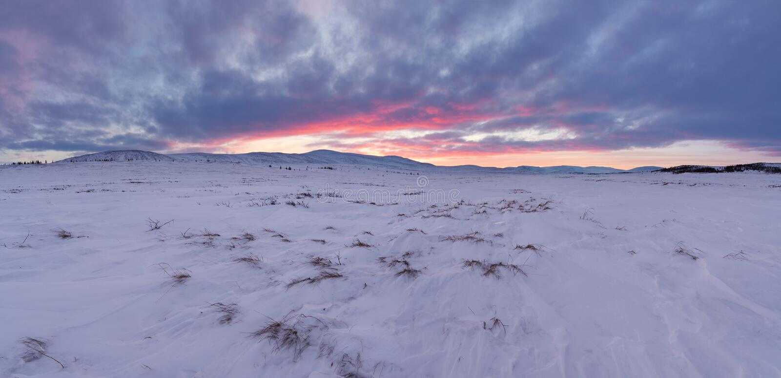 Arctic tundra landscape. Land of Hope. Arctic tunda location in the Yamal Peninsula. Winter landscape royalty free stock photography