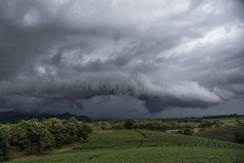 Arcuswolk vóór onweersbui Bewolkt landschap met onweerswolken bij theeaanplanting in stormachtige weerdag royalty-vrije stock fotografie