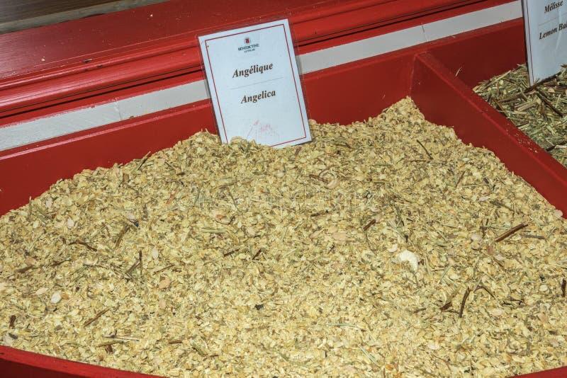 Arcydzięgiel, jeden składniki trunek Benedyktyński opactwo zdjęcia stock