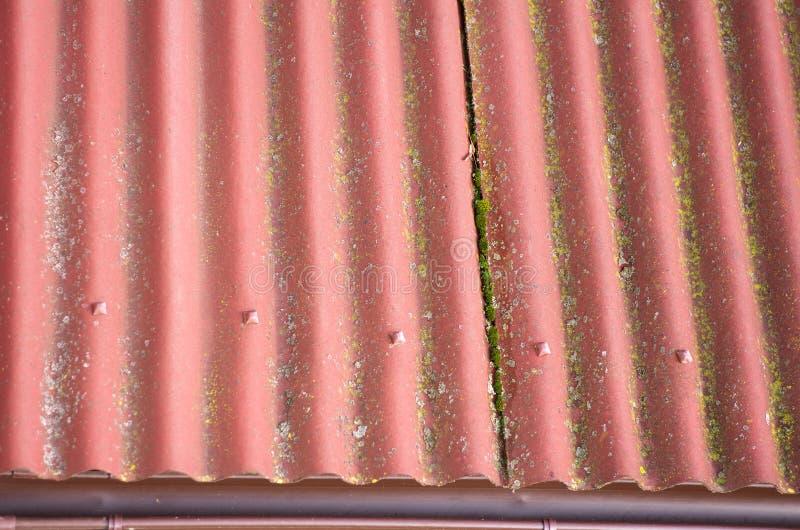 Ardósia para telhas de cores vermelhas telhado Musgo-coberto imagens de stock