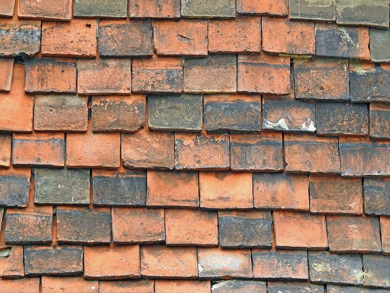 Ardesia vittoriana di costruzione dei punti delle mattonelle di tetto vecchia immagine stock libera da diritti
