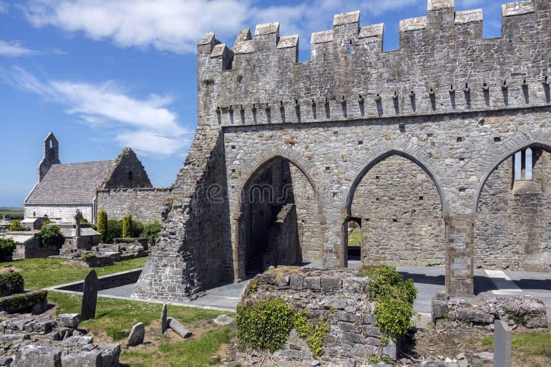 Ardfertkathedraal - Provincie Kerry - Ierland royalty-vrije stock foto