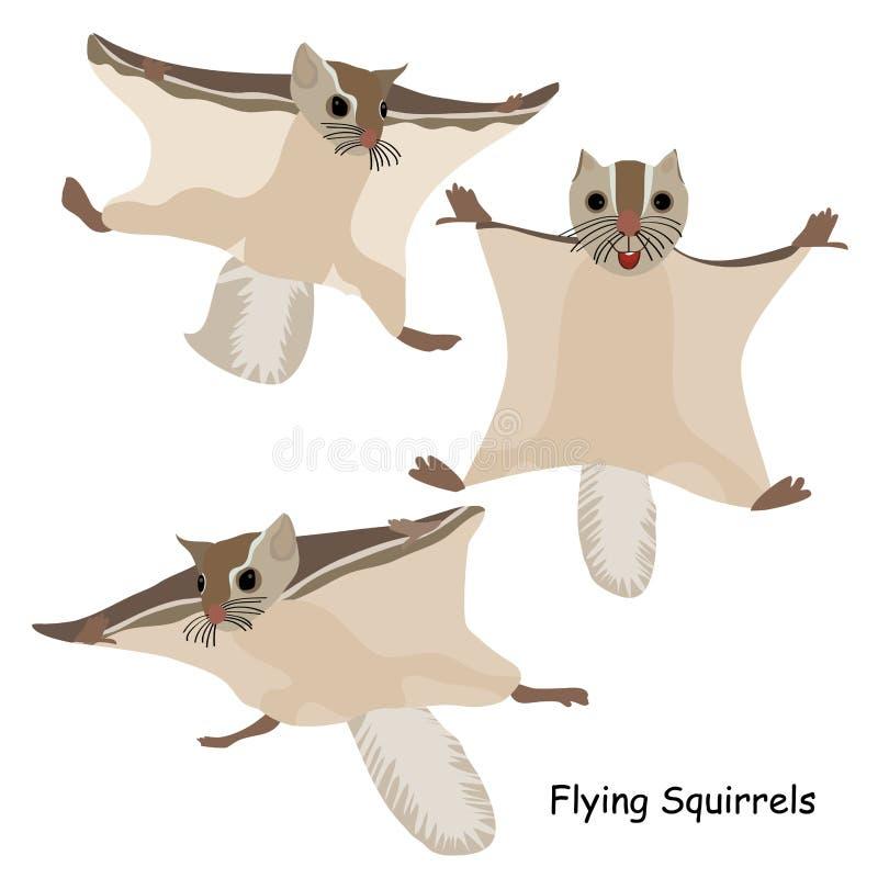 Ardillas de vuelo fijadas libre illustration