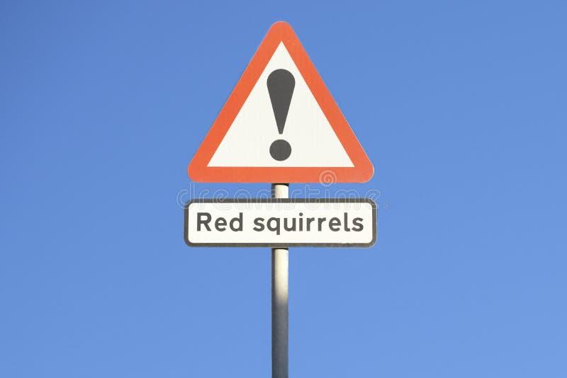 Ardillas rojas que advierten la señal de tráfico del peligro para la seguridad de animales y de motoristas en campo rural foto de archivo