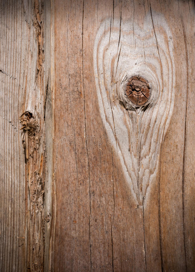 Area around bough in heart shape on old wood. Area around bough in heart shape on old cracked wood royalty free stock photo