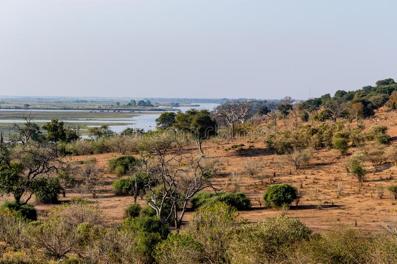 Area of the chobe national park at the chobe river in botswana in Africa stock photography