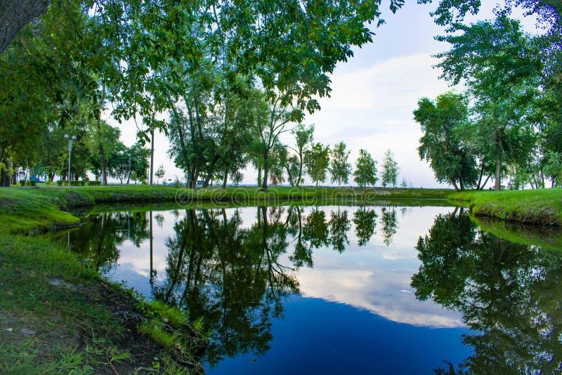 Area del parco con un bello lago fotografia stock