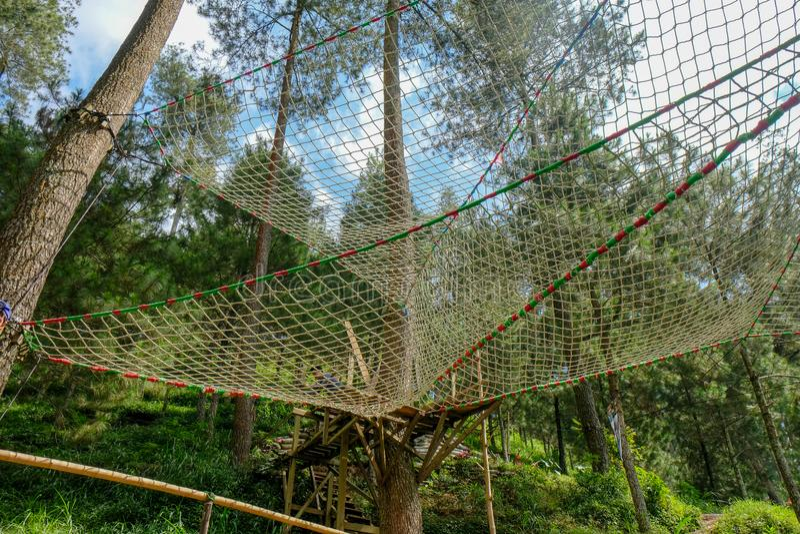 Area della foresta di Batu, Indonesia fotografia stock
