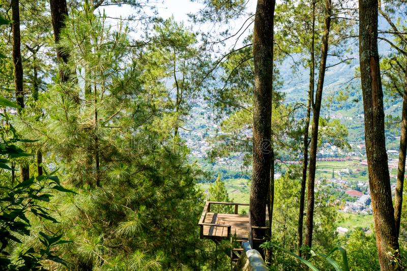 Area della foresta di Batu, Indonesia fotografie stock