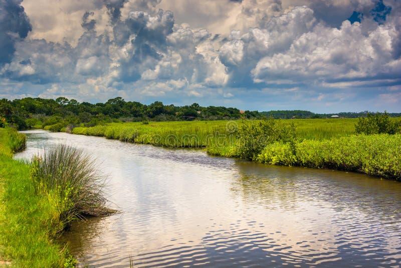 Area della palude di Tomoka River, a Tomoka State Park, Florida immagine stock libera da diritti