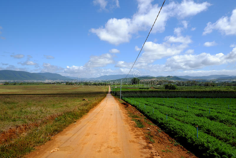 Area di agricoltura, Dalat, Vietnam, campo, azienda agricola di verdure immagine stock