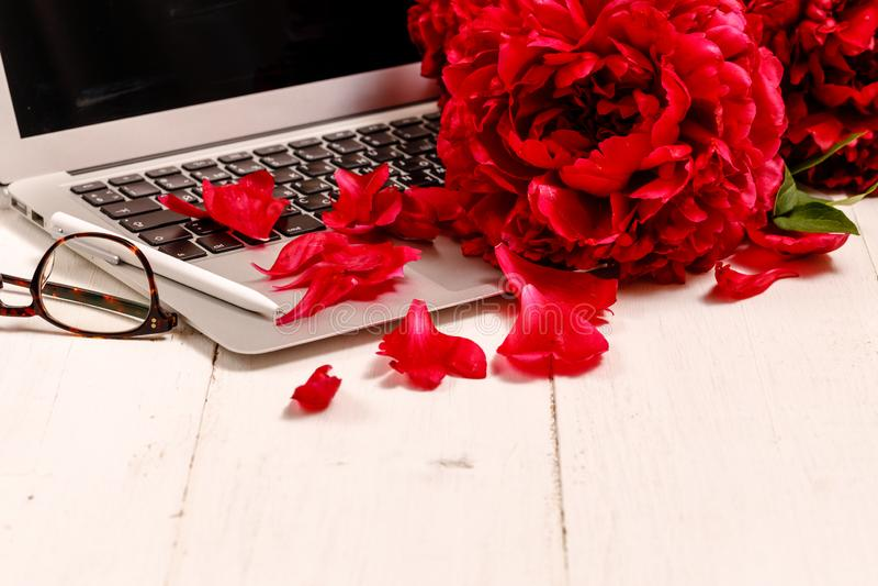 Area di lavoro con un taccuino, tastiera, peonie rosse delle free lance o di blogger su un fondo bianco immagine stock libera da diritti