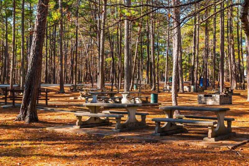 Area di picnic di Studdard nel parco di pietra della montagna, Georgia, U.S.A. fotografia stock libera da diritti