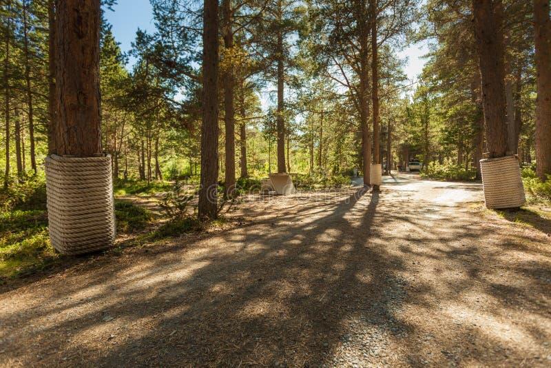 Area di riposo di Liasanden Itinerario norvegese Sognefjellet immagine stock libera da diritti