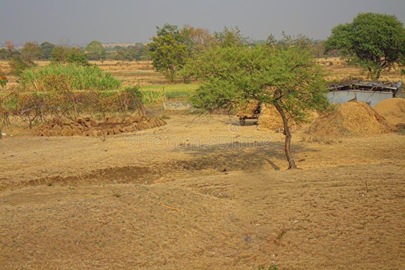 Area intorno a Nagpur, India Colline pedemontana asciutte con i giardini degli agricoltori dei frutteti immagini stock