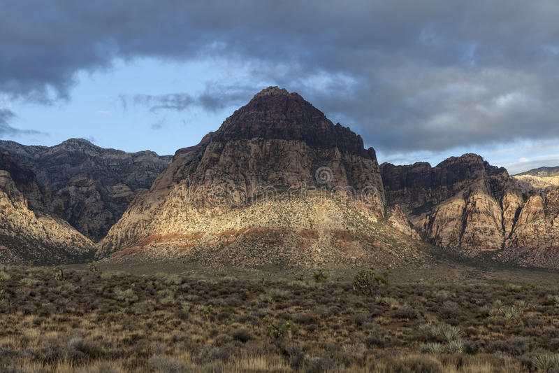 Area Nazionale Nevada Di Conservazione Del Canyon Rosso Della Roccia Immagine Stock Libera da Diritti