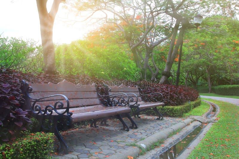 Area pacifica della sedia in parco immagini stock