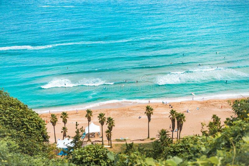 Areal skott av den härliga Jeju östranden med massor av entusiastiska surfare som simmar I royaltyfria bilder