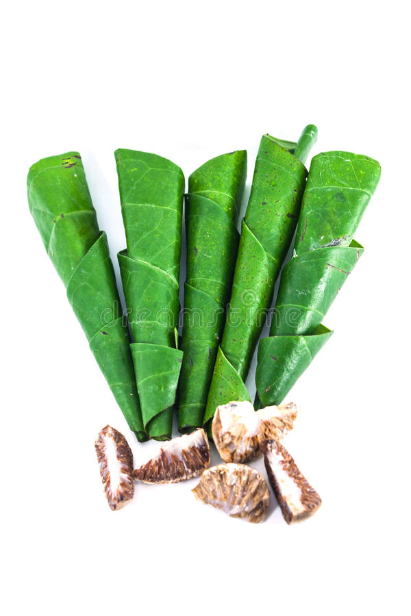 Download Areca betel leaves nut stock photo. Image of food, beauty - 29597942
