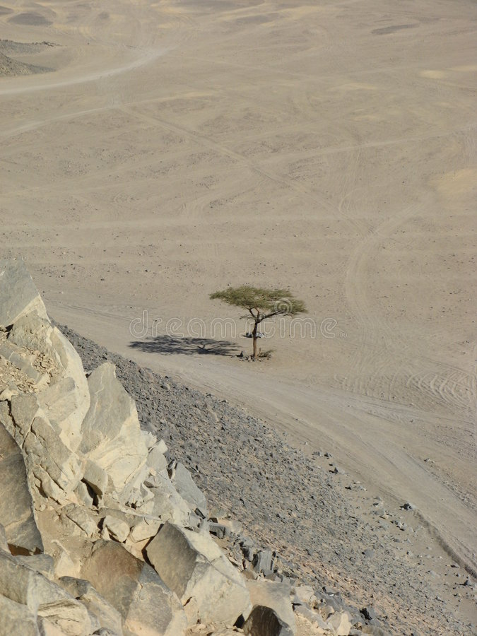 Areia árabe, Egipto, África fotografia de stock royalty free
