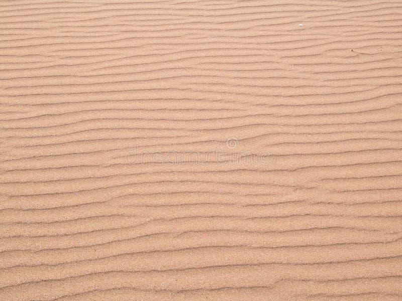 Download Areia imagem de stock. Imagem de navels, desertos, dunas - 108101