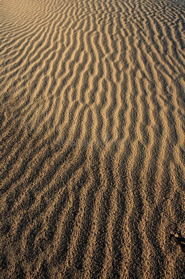 Areia abstrata Backgound: Vertical foto de stock royalty free