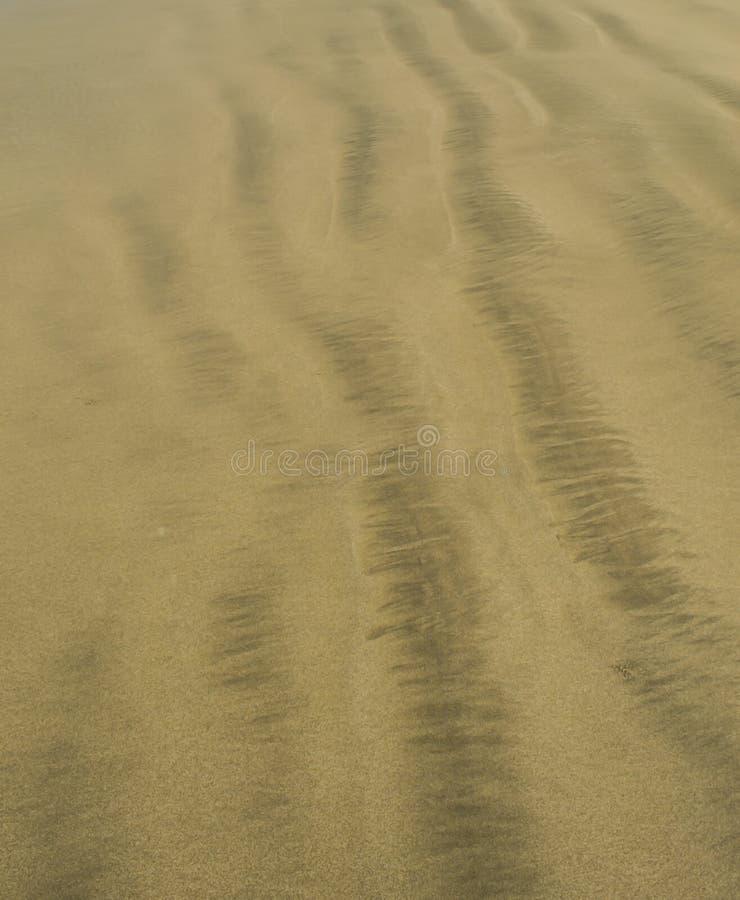 Areia amarela na praia Fundo, textura fotos de stock royalty free