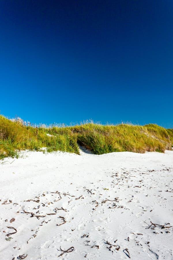 Areia branca, duna e céu azul Sanday, Orkney, Escócia fotografia de stock