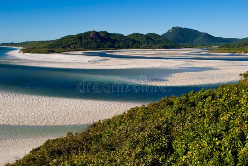 Areia branca no console de Whitsunday foto de stock royalty free
