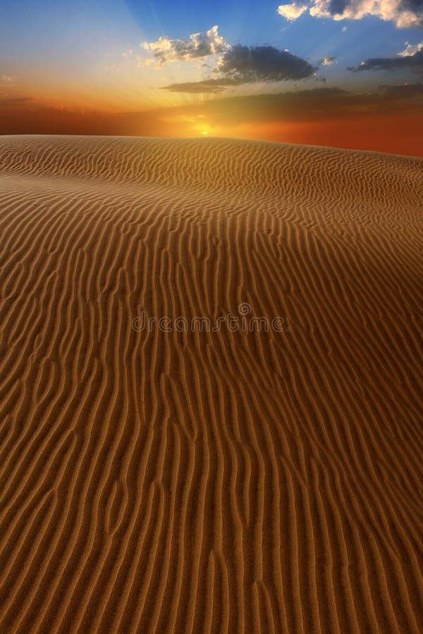 Areia das dunas do deserto em Maspalomas Gran Canaria fotos de stock royalty free