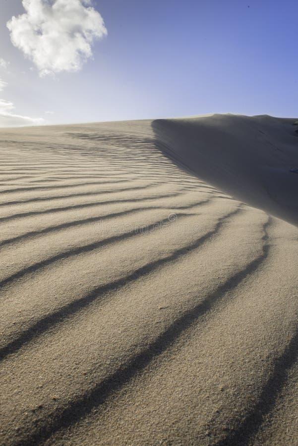 Areia de sopro do vento sobre a duna imagens de stock