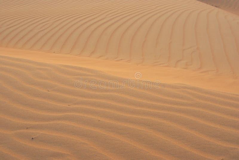 Areia do deserto fotos de stock royalty free