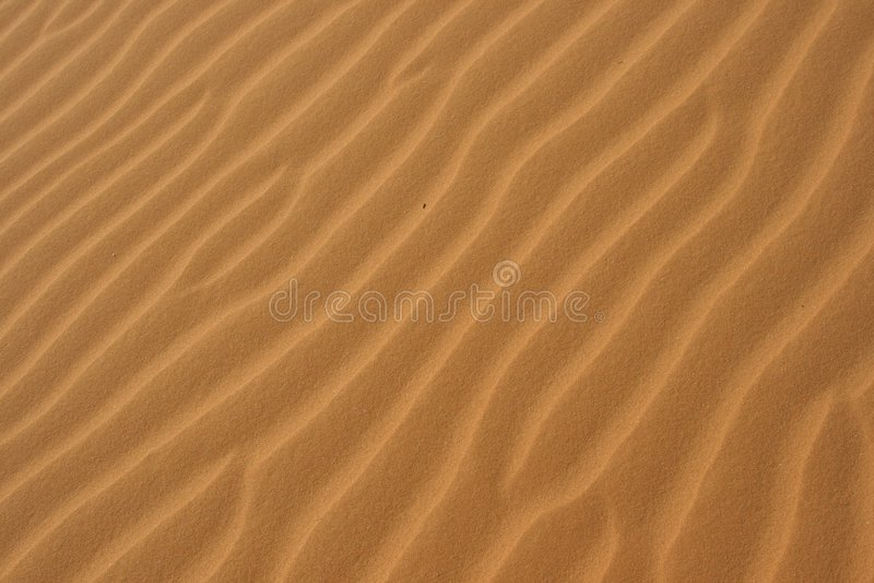 Areia do deserto imagens de stock