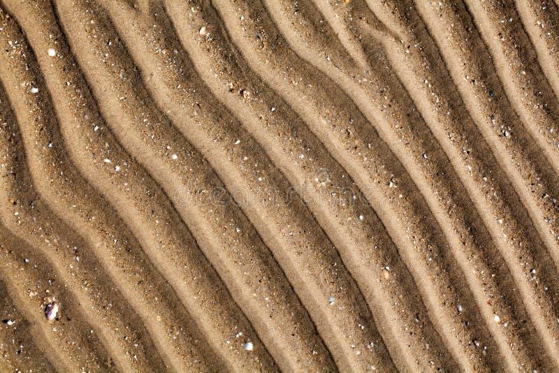 Areia dourada amarela no fim da opinião superior da praia do mar acima, teste padrão seco com nervuras da superfície da areia, li imagens de stock royalty free