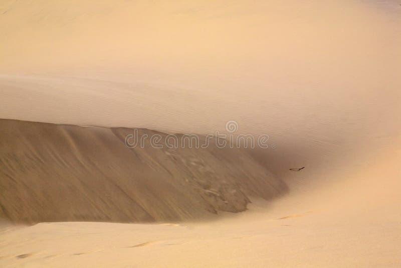 Areia e dunas Rippling para o fundo imagens de stock