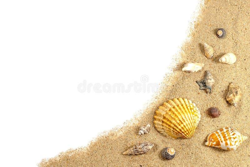 Areia e escudos da praia foto de stock