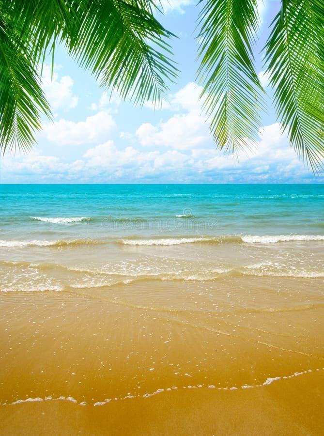 Areia e oceano imagem de stock