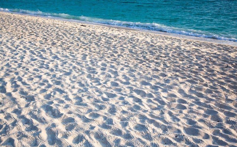 areia fina e água azul clara - fundo de praia imagens de stock royalty free