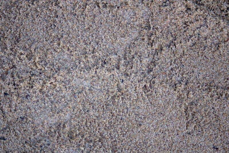 Areia molhada fina fotos de stock